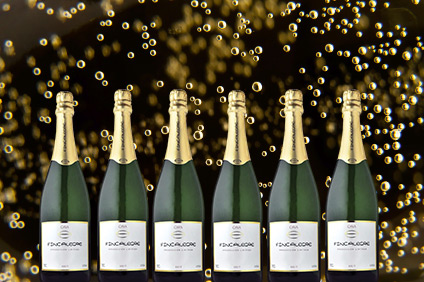 Spanish Sparkling Celebration 6-Pack